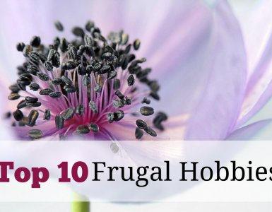 Want to live large on a small budget? If so, try out some of these frugal hobbies and see just how much money you could save. #frugality #thrifty