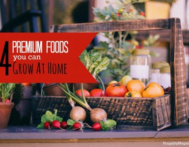Want to save money and spend less on groceries? If so, here are some premium foods that anyone can grow at home. #frugality