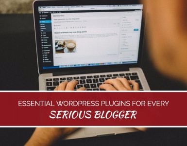 There are literally thousands of Wordpress plugins to help you build your blog - but which ones are really best? This list, from an experienced and successful blogger, lays out exactly which plugins the pro bloggers really use...
